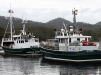 Guide to fishing in Tasmania